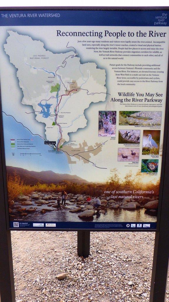Emma-Wood-State-Beach-RV-Camping-39.JPG