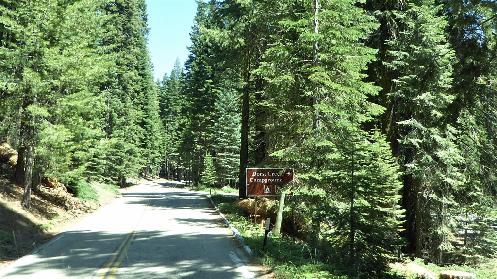 Sequoia-National-Park-016.JPG