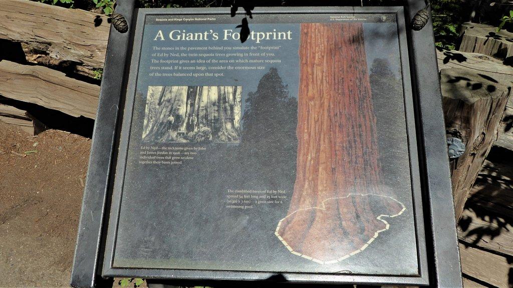 Sequoia-National-Park-077.JPG