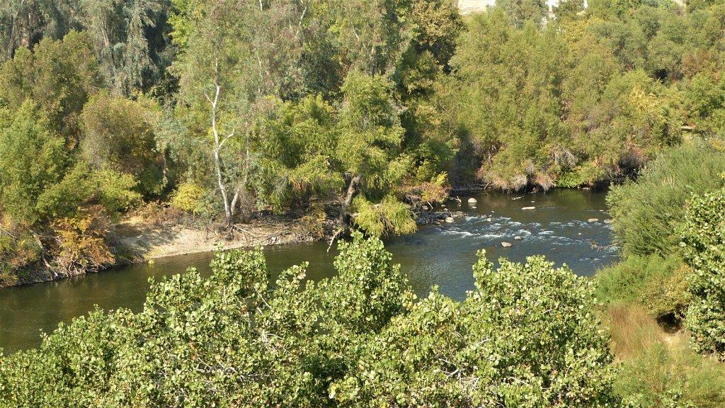 Kern-River-Campground-19.JPG