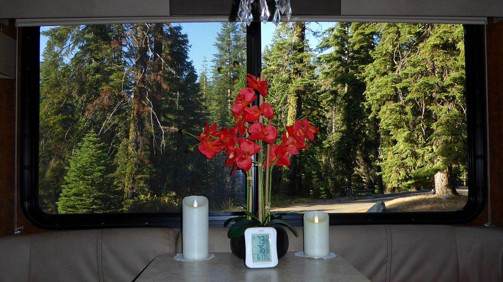 Sequoia-National-Park-059.JPG
